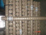 Acoplamiento de alambre soldado galvanizado sumergido caliente