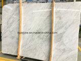 De geselecteerde Witte Marmeren Plak van Bianco Carrara voor de Tegel van /Wall van de Bevloering/van de Vloer/het Bedekken/van de Badkamers