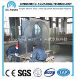 Progetto acrilico libero personalizzato del serbatoio di pesci dell'acquario