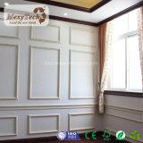 El panel de pared interior de madera del compuesto WPC de la opción múltiple