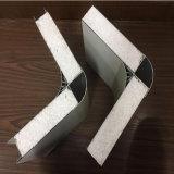 """Panneau """"sandwich"""" en acier de la couleur ENV d'isolation thermique pour la toiture"""