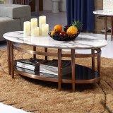 로즈 황금 그려진 스테인리스 커피용 탁자