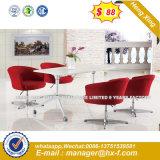 Bequemer lederner Stab-Stuhl für Verkauf (HX-SN8061)