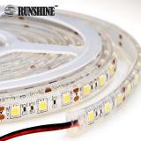 Migliore SMD5050 6000K indicatore luminoso di striscia flessibile bianco di vendita di CC 12V/24V LED