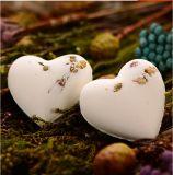 De hete Verkopende hart-Kleurrijke Bommen van het Bad voor Bath SPA