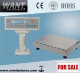 3kg/6kg/10kg/20kg/30kg/100 kg/200 kg/300 kg Balanza de plataforma de la industria digital