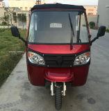 Новый трицикл типа для рикши пассажира (DTR 11B)