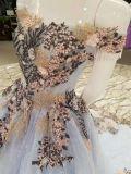 Aoliweiya Merkmals-Hochzeits-Abend-Kleid
