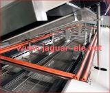 A SMT isento de chumbo de refluxo de ar quente do forno com 10 Zone
