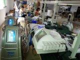Enlèvement de cellulites de Coolsculpting pour la machine rapide de forme de corps