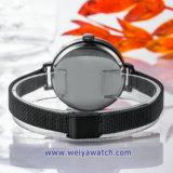 Signora Quartz Wist Watch, vigilanze di signore (WY17026B) della cinghia della lega della maglia dell'OEM