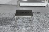 Muebles modernos de la sala de estar del vector de extremo del vector de la cara del vector del sofá de la base del acero inoxidable