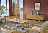 Combinação retangular simples moderna da mesa de centro da tabela de chá da sala de visitas da mesa de centro nórdica