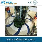 Elevatore panoramico di vetro di Lamintaed del semicerchio