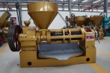 Macchina dell'espulsore dell'olio della vite della fabbrica di Guangxin della pressa di stampaggio dell'olio Yzyx140