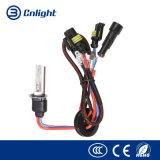 VERBORG de Hete Verkoop van Cnlight 12V 35W 4300K 6000K 8000K Rechte H1 Lamp Van uitstekende kwaliteit van het Xenon van de Bollen van het Xenon H1 H3 h4-1 h4-2 H9 H11 9005 9006 H27 880 881 12V 35W