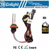 Le CREE Csp d'ampoule de phare de véhicule de Hb4 9006 DEL ébrèche la lumière de regain de phare de 50W 6500K 8000lm DEL pour VW Mazda Hyundai de Toyota Honda