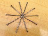 Checkered 헤드 광저우에 있는 Polished 매끄러운 정강이 다이아몬드 점을%s 가진 공장 가격 싼 일반적인 못