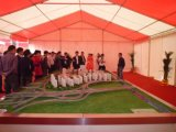 De openlucht Schone Tent van de Partij van het Huwelijk van de Spanwijdte voor Verkoop