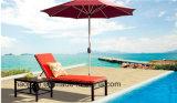 옥외 /Rattan/정원은/안뜰 /Hotel 가구 플라스틱 목제 라운지용 의자 & 측 테이블 놓았다 (HS 3022C&HS 3022ET)