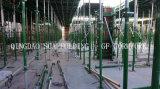 Livro Verde Descofragem rápida liberação rápida Descofragem concreto de Aço de decapagem