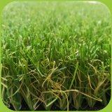 جديدة عشب منظر طبيعيّ شعبيّة في أستراليا & كندا