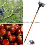 Elektrische Frucht-Ernte-Maschine, die olivgrünen Sammeln-Maschinen-Oliven-Picker ineinanderschiebt