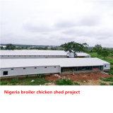 닭 농장 프로젝트를 위한 Prefabricated 닭장