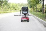Zappy scooter de 250W con 24V 20Ah batería
