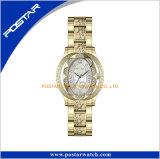 Dernière mode Long Top Design marque populaire Lady montres