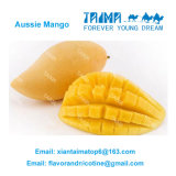 100% E 액체 니코틴 제안을%s 자연적인 집중된 레몬 취향 무료 샘플