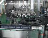 De automatische Bottelmachine van het Mineraalwater van de Fles van het Huisdier 500ml