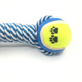 Baumwolseil mit Tennis-Kugel-Haustier gibt Hundespielzeug an