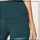 Calças longas das mulheres coloridas das caneleiras da aptidão da ioga do Sportswear