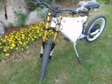 Fashionable European After-Dirty Office Ebikes Rear 48V 1500W