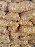 Frische lange Form-Kartoffel