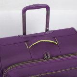 Form-neues Entwurfs-Laufkatze-Gepäck mit guter Qualität