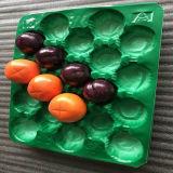 Frucht trockenes und sauberes halten pp.-Plastikfrucht-Tellersegment