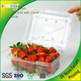 Doos van pvc van de Dekking van de fabriek de In het groot Duidelijke Plastic Verpakkende voor de Groente van het Vlees van het Fruit