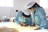 Sneeuw TextielOeko van Taihu verklaarde de Mooie Gezonde Reeks van het Beddegoed van de Zijde van de Bloem