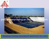 Betume Waterproofing Sbs/APP da membrana para o telhado