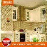 De witte Keukenkasten van de Muur van de Opslag van de Keuken van de Deuren van het Gebrandschilderd glas