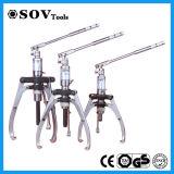 Tenditore idraulico sincrono Integrated di Beaing (serie di SV15T)