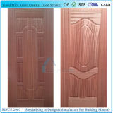 설계된 티크 나무 베니어를 가진 주조하거나 박층으로 이루어지는 문 피부 합판