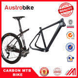 "Mountain Bike Carbon Frame 26 ""20"""