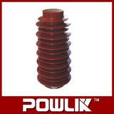 Qualitäts-Epoxidharz-Isolierung (Zn3-24kv/75X210)
