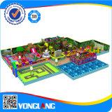Спортивная площадка дешевого большого парка атракционов высокого качества крытая, Yl-Tqb050
