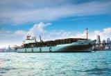 De Dienst Ex Shanghai van de Logistiek van Uasc aan Oran/Algiers