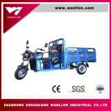 трицикл груза тележки мотоцикла 3-Wheel электрический для пассажира