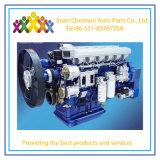 De Motor van Weichai Wp10